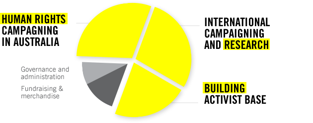 Pie graph illustrating Amnesty's expenditure allocations