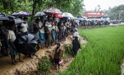 a long line of people standing in a lush, wet field and mud, holding umbrellas