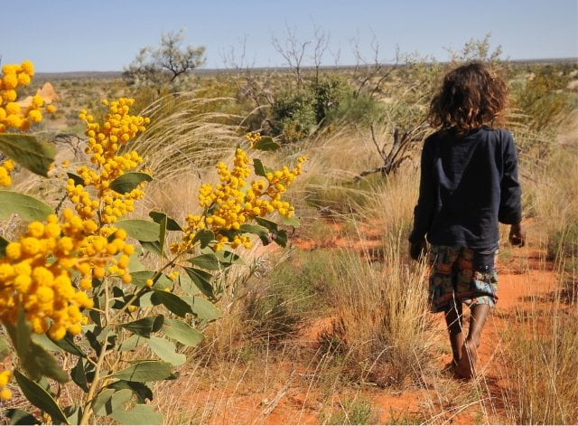 Indigenous child walking through a red-dirt and scrub landscape.