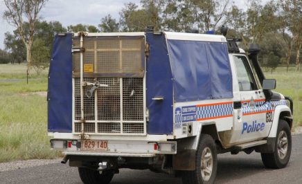 Northern Territory police cage